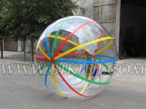 Water Play Equipments, Inflatable Water Walking Ball (D1010) pictures & photos