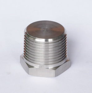 Stainless Steel 304 Plug