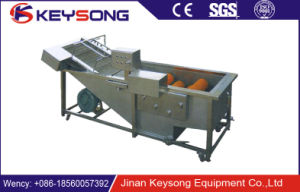 Food Processing Fruit and Vegetable Roller Brush Washing Machine Roller Type Washing Machine pictures & photos