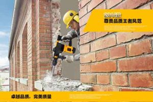 30mm 950W Electric Hammer Tool (LY30-02) pictures & photos