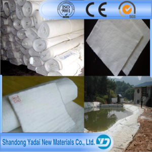 Road Construction Nonwoven Needle Punched Polyester Felt Geotextile pictures & photos