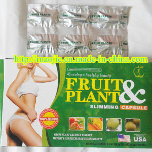 Safe Fruit and Plant Slim Diet Pills (MJ-FP99) pictures & photos