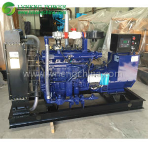 Ce Approved 50kw Biogas Generator pictures & photos