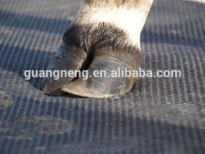 15mm Thick Cow Horse Stable Rubber Mat pictures & photos