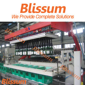 High Quality Case Packing and Sealing Machine/Machinery/Equipment/System pictures & photos