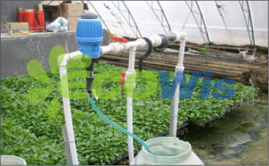 Professional Manufacturer Agriculture Proportion Dosing Pump pictures & photos