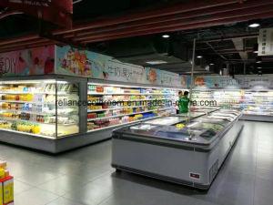 Frozen Food Chest Freezer pictures & photos