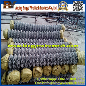 Galvanized Chain Link Fence & Wire Mesh pictures & photos