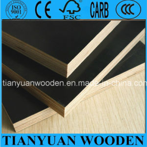 Shuttering Board/Phenolic Board/Plywood Sheet/Construction Plywood pictures & photos