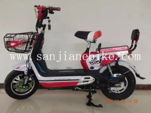New Product 48V Electric Bicycle with En15194 Certification / Professional Manufacturer of E-Bike (SJEBCTB-010)