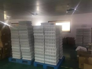 15W LED Global Bulbs Light Bulb E27 A65 A60 pictures & photos