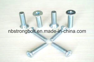 Cross Recessed Countersunk Flat Head Screw pictures & photos