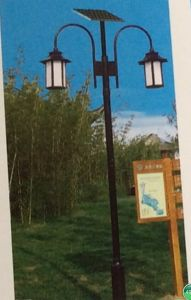 Hot Sale Solar Street Lighting