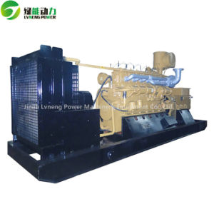 Lvneng 100kw Biogas Generator with Top Brand pictures & photos