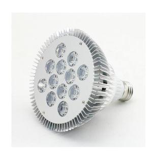 PAR38 12W 220V LED Spotlight pictures & photos