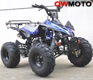 CE Klx Style 125CC ATV Quad with CE (QW-ATV-02)
