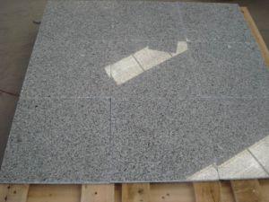 G603 Classico Light Grey Granite Tile pictures & photos