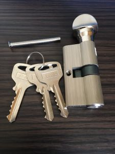 High Quality Mortise Cylinder Lock/Brass Cylinder pictures & photos