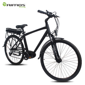 700*42c Central Motor Rear Rack Battery Electric Bicycle pictures & photos