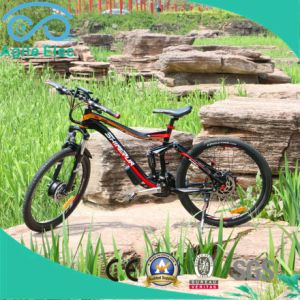36V 250W Hub Motor Powered Electric Bicycle with Battery pictures & photos