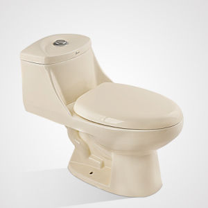 Modern Classic Porcelain Conceal Tank Sitting Bone Color Toilet
