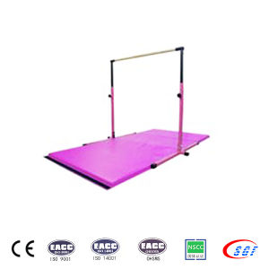 Professional Kids Gymnastics Equipments Leisure Kids Horizontal Bar pictures & photos
