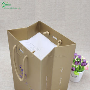 2017 Hot Sale Latest Design Classical Paper Gift Bag (KG-PB073) pictures & photos