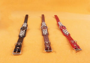 Pet Dog Cat Puppy Fashion Collar (c003) pictures & photos