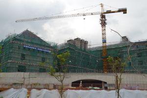 (QTZ80(TC5613)) China Building Crane pictures & photos