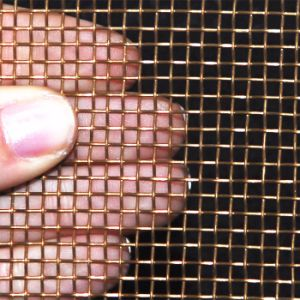 China Manufacturer Supplier of Bronze Wire Mesh (BWM) pictures & photos