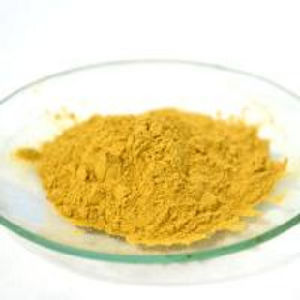 Diosmetin, Citrus Limon Peel Extract 98% (Grj-Dio) pictures & photos