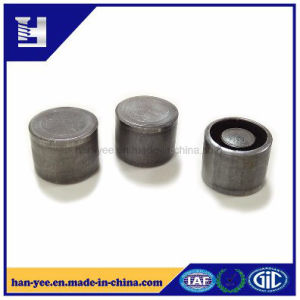 Special Shaped High Precision Fastener pictures & photos
