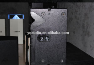 Dule 12 Inch Nedymium Speakers Line Array China pictures & photos