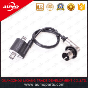 Ignition Coil with Iron Cap for Longjia Lj50qt-2L 50cc 2t Engine Parts pictures & photos