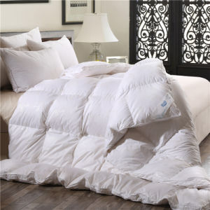 3 Pieces Twin Cheap Quilts for Hotel pictures & photos