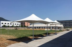 High Quality Commercial Outdoor Cafe Sun Umbrellas for Sale pictures & photos