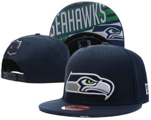 Baseball Caps Sea Hawks Hats pictures & photos