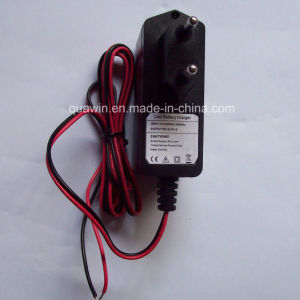 Universal Charger 8.4V 1A for 7.4V Lithium Battery pictures & photos