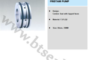 Fristam Pump Seal Btf-8 pictures & photos