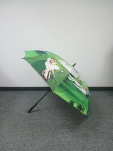 Sun&Rain Promotion Gift Umbrella pictures & photos