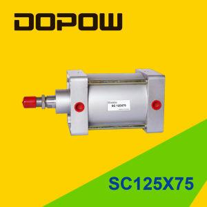 Dopow Sc125X75 Cylinder Standard Cylinder pictures & photos