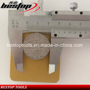 Redi-Lock Diamond Grinding Tools for Polishing Medium Concrete pictures & photos