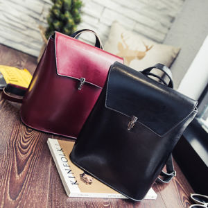 2016 Bags for Women Leather Handbags Crossbody Bags pictures & photos