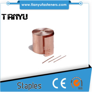 All Type and Size Galvanized Wire Industrial Staples pictures & photos