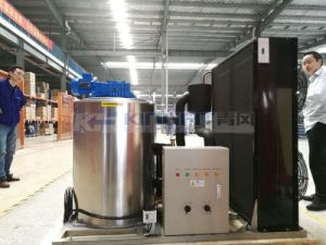 Flake Ice Machine for Supermarket Fresh pictures & photos
