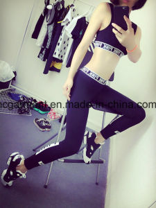 Running Clothing for Women, Yoga Wear, Sports Wear pictures & photos