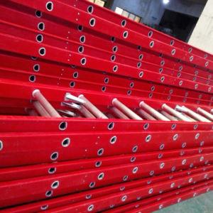 Fiberglass Ladder pictures & photos