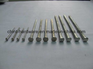 Supply Electro Galvanized Square Boat Nail /Galvanized Marine Nail for Wood Boat with Square Body pictures & photos