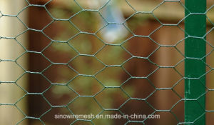 Sailin Galvanized PVC Wire Netting for Garden Fence pictures & photos