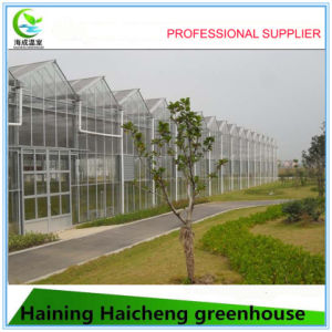 Graden Glass Tropical Greenhouse for Agriculture Flower House pictures & photos